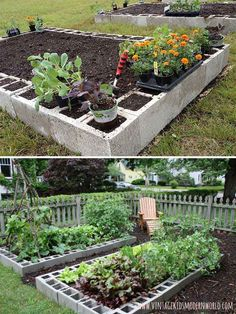 Concrete block raised garden beds are the perfect materials to organize an easy and cheap vegetable growing place. - 22 Ways for Growing a Successful Vegetable Garden Veg Garden, Garden Boxes, Lawn And Garden, Vegetable Gardening, Small Yard Vegetable Garden Ideas, Raised Vegetable Gardens, Indoor Garden, Organic Vegetables, Growing Vegetables