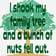 Seriously Funny Pictures with Sayings | Okay, seriously...everyone has nuts in their family ... | Funny Quotes