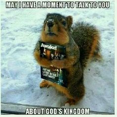 Every day I rest, every day I feel more guilty. But that's unfair to God because I wasn't coerced into making any promises. What matters is, I'm doing the best I can 🤗 Jw Meme, Jw Jokes, Mormon Jokes, Jehovah Witness Bible, Jehovah S Witnesses, Jehovah's Witnesses Humor, Jw Humor, Bible Humor, Public Witnessing