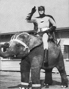 c. 1966-1968: Batman riding an elephant | Retronaut