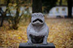 Pies Kawelin :) #Białystok fot. Dawid Gromadzki