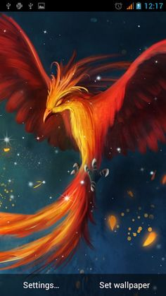 Fantasy/Phoenix Wallpaper ID: 603425 - Mobile Abyss Phoenix Painting, Phoenix Art, Mythical Birds, Mythical Creatures, Mythological Creatures, Phoenix Wallpaper, Phoenix Images, Cute Fantasy Creatures, Bird Drawings