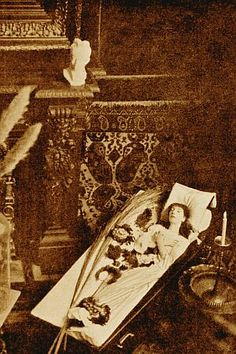 Portrait of Sarah Bernhardt slept in a coffin, 1882 Macabre, Coffin, Animal Print Rug, Famous People, Bridal Gowns, Sleep, Romantic, Portrait, Clothing