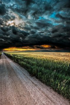 A storm in the country (Switzerland) by John Noe / 500px