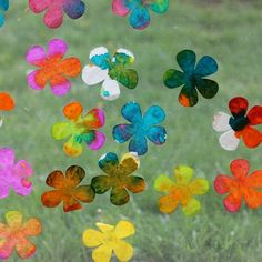 Coffee filter flowers - an awesome science and art experiment to try with the kids