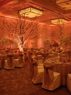 Pipe and Drape Walls with Uplighting, Chair Covers and Ties, Giant Trees