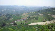 """Uitzichtspunt  La Morra maakt deel uit van wat wij simpelweg """"Barolo-land"""" noemen, oftewel : het gebied waar Barolo mag geproduceerd worden.  Je kunt er dan ook niet naast de omliggende wijngaarden kijken.   www.huizenjacht-italie.com"""