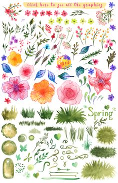 Spring summer design kit watercolor  by Samui-Art on @creativemarket