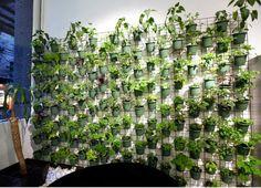 DIY Balcony Vertical Garden Ideas - also is a good privacy wall