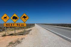 """Hier findest du alle wichtigen Australien Reisetipps & Informationen, dank diesen du dich optimal für deine Reise nach """"Down Under"""" vorbereiten kannst."""