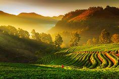 AngKhang by Sonchai Sriyawong on 500px