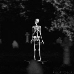 Nothing motivates to live more than a visit at. Gifs, Animated Love Images, Halloween Wallpaper Iphone, Francisco Goya, Skeleton Art, Aesthetic Gif, White Aesthetic, Danse Macabre, Unusual Art