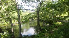Paisaje senda fluvial río Arenterio Country Roads, Scenery, Fotografia