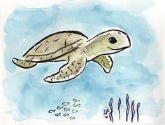 Turtle   Baby Sea Turtle Drawing   AkehDuit.