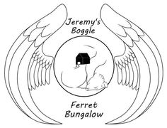 Behavioral Issues, Boggle, Ferrets, Animal Welfare, Animal Rescue, Pet Adoption, Alabama, Bungalow