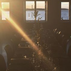 Summer still hasn't completely given way for autumn in Stockholm. Last night our guests from Norway got to enjoy a magical evening at the seaside gourmet venue Ekensdal #visitsweden #visitstockholm #mice #incentivetravel #dmc #ekensdal Visit Stockholm, Visit Sweden, Mice, Norway, Seaside, Autumn, Night, Concert, Summer