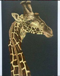 Giraffe By Fang Tian Yus