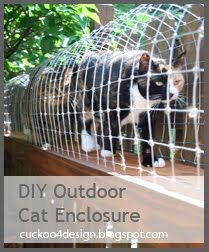 What indoor cat wouldn't be happy with  this?  I might try something like this for my bunnies...Cuckoo 4 Design: Cuckoo for my cats!