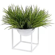 Modern Metal Cube Frame Planter Bowl, Decorative Accent Vase with Attached Framework Stand, White Succulent Hanging Planter, Glass Planter, Planter Table, Ceramic Planters, Head Planters, Flower Planters, Flower Vases, Flower Pots, Flowers