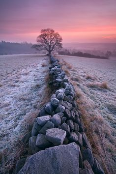 "A pretty and peaceful scene of a frost winter sunrise with a stone fence (wall) leading to a lone tree. ""Winter Morning by Tristan Campbell"" Beautiful World, Beautiful Places, Beautiful Pictures, Landscape Photography, Nature Photography, Ligne D Horizon, Winter Szenen, Foto Poster, Winter Beauty"