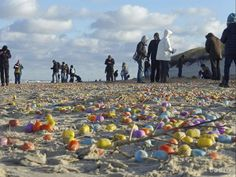 Tourists gather colorful plastic eggs on the beach of the German North Sea island of Langeoog, Thursday Jan. Giant Easter Eggs, Easter Bunny, Weather News, Plastic Eggs, Weather Underground, The Weather Channel, North Sea, Sandy Beaches, Sea Shells