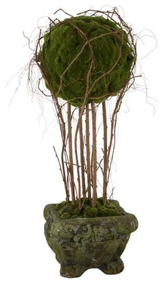 Silk Topiaries: How To Get A Beautiful Shaped House Plant Without A Green Thumb | BarefootFloor.com
