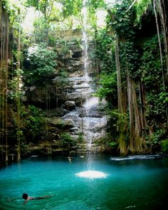 Ik kil Cenote in Chichen Itza, Mexico. swam here last year & can't wait to go back.