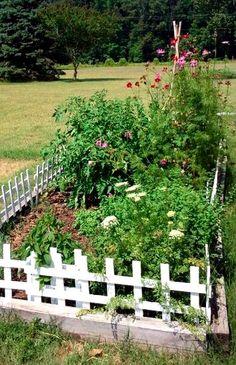 Fresh Eggs Daily: Chickens & Gardening