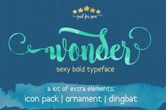 Wonder is another modern calligraphy typeface #customfonts #handmadefonts #coolfonts #scriptfonts