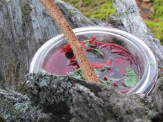 Borch a´la Saimaa. Feeling Well, Feel Better, Food And Drink, Outdoor Decor