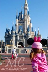 Walt Disney World.  We can help you book your next trip with the lowest price guaranteed.