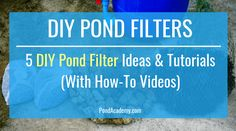 Learn how to make a pond filter with our simple step-by-step instructions and materials list! Choose from 5 DIY pond filter ideas with how-to videos! Spas, Behance, Breathe, Las Vegas, Diy Pond, Pond Filters, Diy Clothes Videos, Healthy Meals For Two, Healthy People 2020 Goals