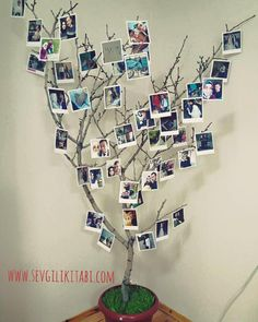 #fotobaskı #dekor #dekorasyon #evdekorasyonu #karefotokart #polafotokart Diy Crafts For Home Decor, Tree Crafts, Handmade Home Decor, Cute Bedroom Ideas, Cute Room Decor, Birthday Room Decorations, Dorm Decorations, Diy Photo, Creative Decor
