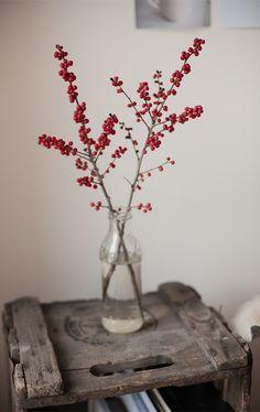 ONE ALTERNATIVE CHRISTMAS IDEA: CHRISTMAS TREE INSPIRATIONAL BOARD | 79 Ideas