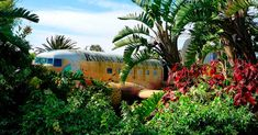 There is an abandoned plane in South Africa's Ratanga Junction theme park  #AbandonedAirplanes #Airplanes
