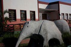 Monumento em homenagem ao tamanduá bandeira pode ser visitado no centro histórico da capital de Roraima, no norte do Brasil MAIS Eduardo Vessoni/UOL