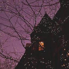 Purple Sky And Tree Lights halloween halloween pictures halloween images halloween ideas