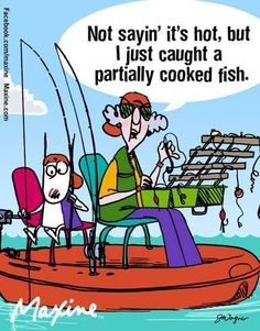 Maxine: Not saying it's hot, but I just caught a partially cooked fish. Hot Weather Humor, Funny Weather, Funny Dogs, Funny Animals, Fishing Humor, Cute Images, Funny Cards, Adult Humor, Just For Laughs