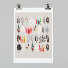 Botanical Assembly Print by Inaluxe - Prints & Posters | NZ Art Prints & Poster Store | endemicworld.com