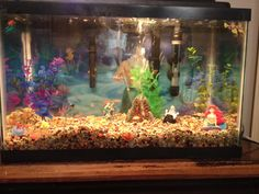 Images for finding nemo fish tank background diy for Little mermaid fish tank