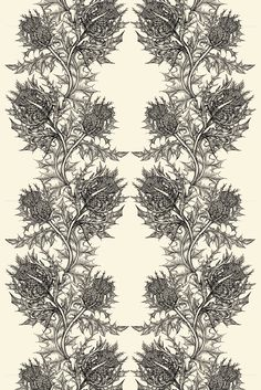 Timorous Beasties Wallcoverings - Thistle Superwide