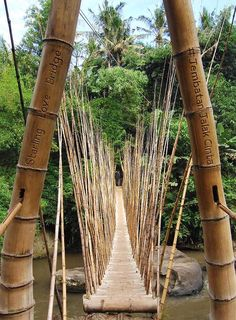 Interview: Ibuku founder Elora Hardy on building with bamboo