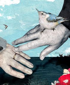 Tara Hardy. Holding Hands. The Globe and Mail. #collage