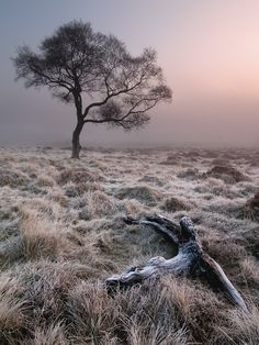 Frost on Hathersage Moor <3 - Pic By Stephen Elliot