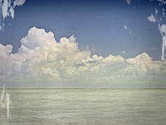 8eb0f2bd79 Costa del Mar - See What s Out There Costa Del Mar Sunglasses