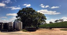 Even Wine is an outdoor thing in australia. No buildings attached.