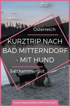 Mädels Kurztrip nach Bad Mitterndorf – Seenliebe, Ruderboot, Wald & Genuss