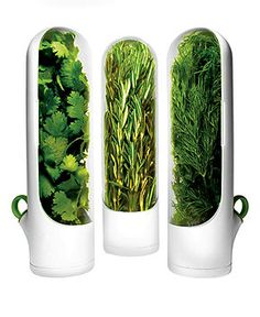 Prepara Herb Containers, Set of 3 Mini Herb Savors - Kitchen Gadgets - Kitchen - Macy's