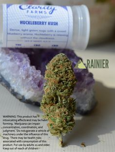 Find the Huckleberry Kush, along with other quality strains from Clarity Farms at Rainier Downtown in Tacoma Washington :D #legalweed #i502 #thiscouldbeyours #recreationalcannabis #worldreefers #gotnugs #dankbud #wagrown