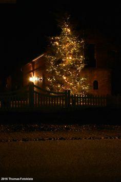 Frohe Weihnachten   #Tannenbaum #Weihnachten